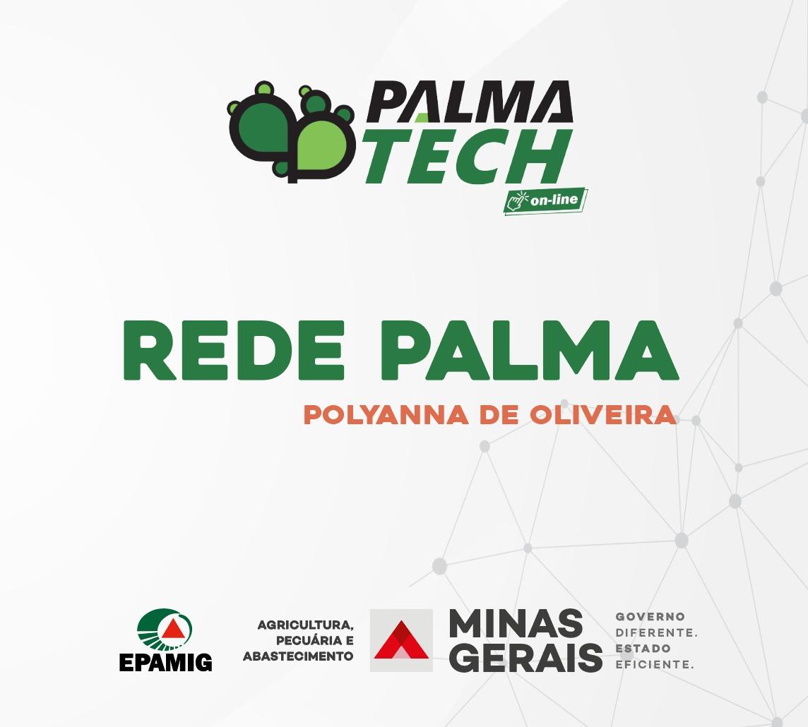 Rede Palma – programa, objetivos e resultados