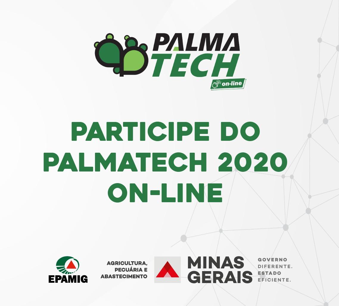 PalmaTech Online
